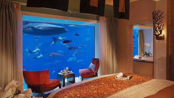 Bedroom with underwater aquarium